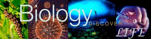 Biology: Discover Life Banner