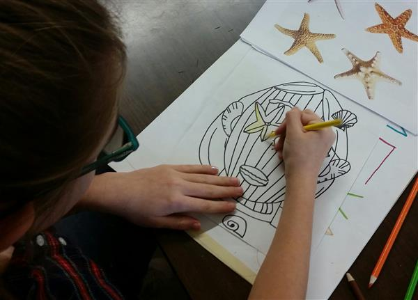 Student Working On Still Life Portrait of Sea Shells