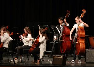 BSMS Orchestra